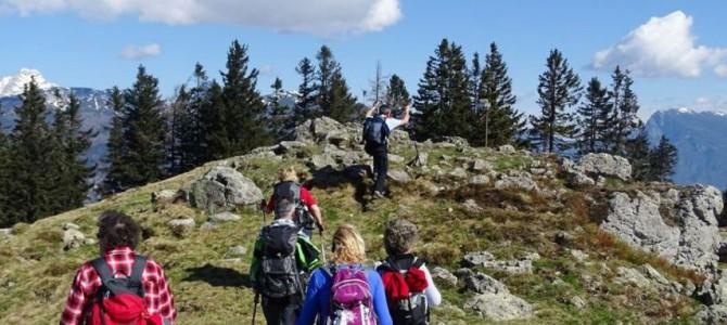 25.4.2021 – PohodČrnivec-Kašna planina-Lepenatka-Kal-Veliki Rogatec(1557m)-Kal-Kašna Pl.(Črnivec)