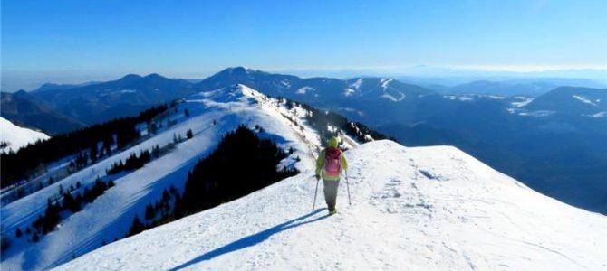 8.5.2021 Pohod Soriška planina-Litostrojska koča-Dravh(1547m)-Lajnar-Slatnik-Šavnik-Možic(1602m)-Bohinjsko sedlo